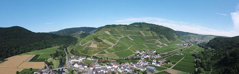 Bild Weinberg Rechner Herrenberg - Rotweingut Jean Stodden - Rheinland-Pfalz