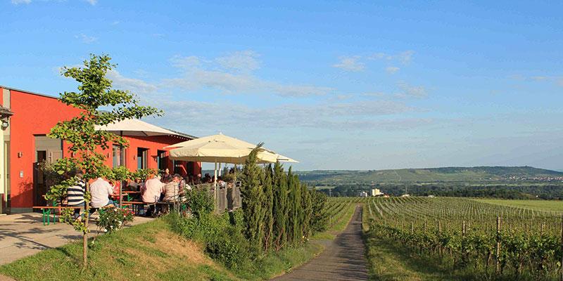 Bild - Weingut Nägele Weinkeller - Pfalz